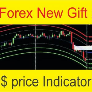 Tani Forex New Gift 3